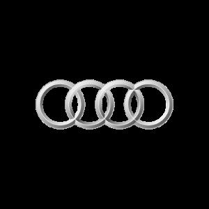 rare-Audi