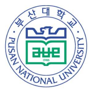 rare-부산대