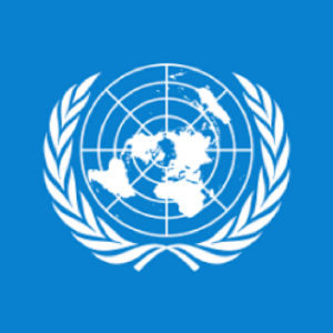 rare-국제연합